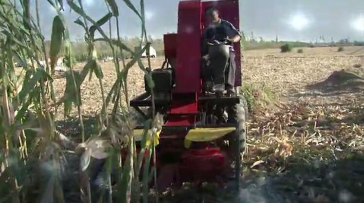 我爱发明疯狂掰棒子玉米收获机器发明人马金刚