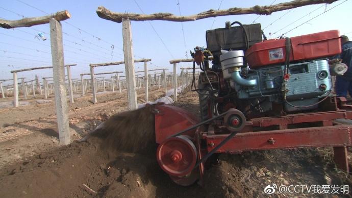 我爱发明葡萄埋腾机器
